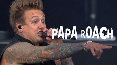 Papa Roach beim Hellfest (2013)