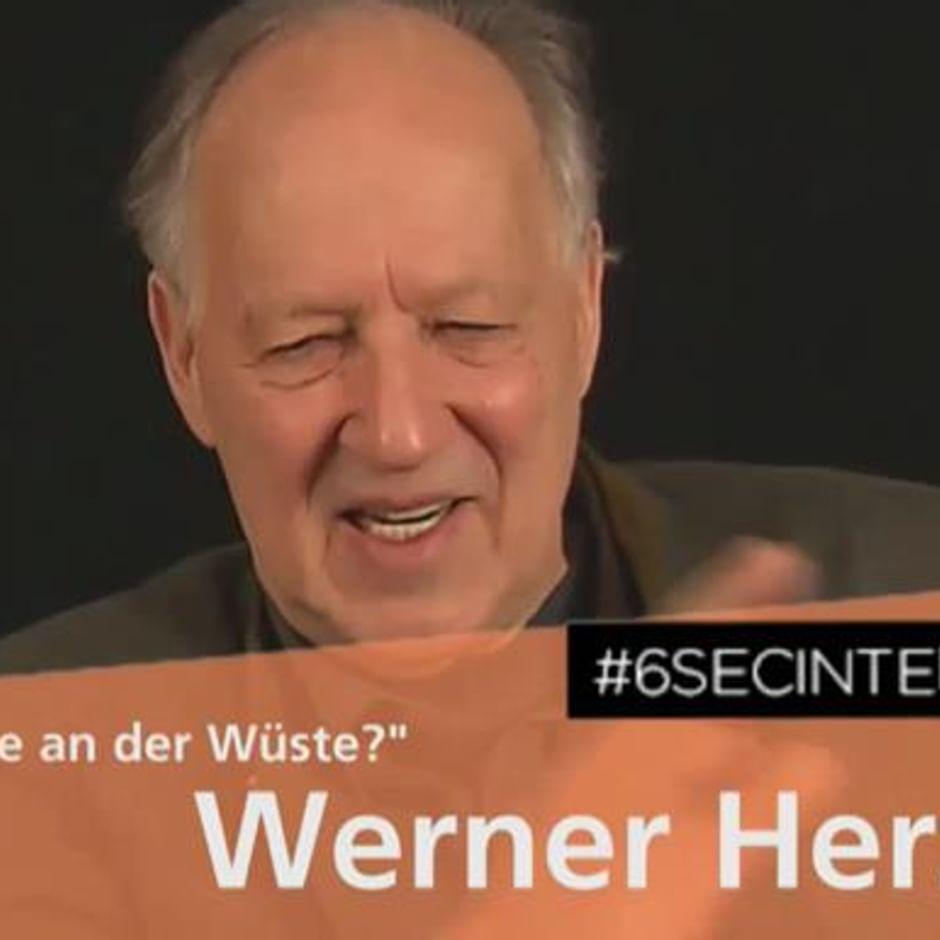 Werner Herzog Memes