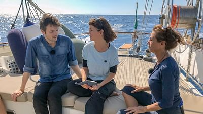 Xenius: Delfine im Mittelmeer