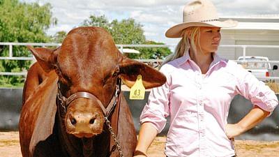 100 pro - Flicky, Cowgirl in Australien