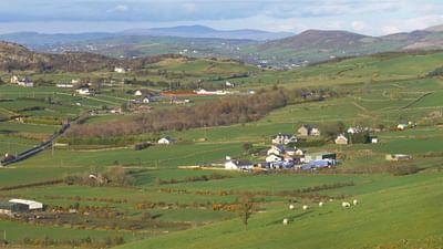 Irland: Die Rückkehr der Schmuggler