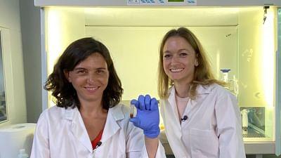 Xenius: Unser Mikrobiom