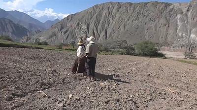 Bolivien: Morales' Unterstützer auf dem Land