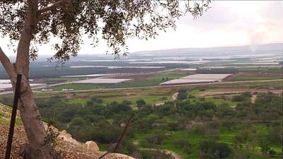 Nahost-Plan: Flickenteppich Jordantal