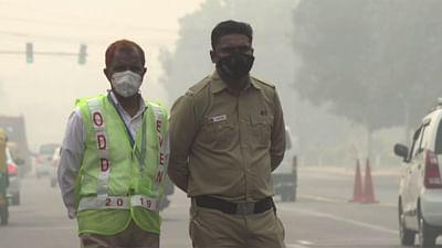 Umweltzerstörung beeinflusst Epidemien