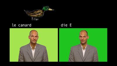 das Wort: die Ente