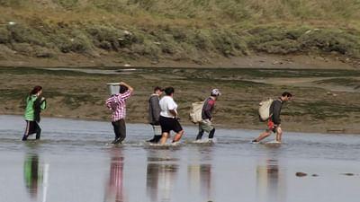 Re: Die Muschelsucher vom Tejo