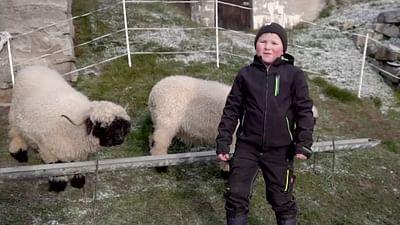 Kinderporträt: Loris aus der Schweiz
