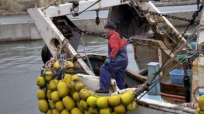 Fukushima: Fischer bangen um ihre Lebensgrundlage