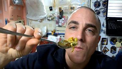 ISS: Der Alltag der Astronauten