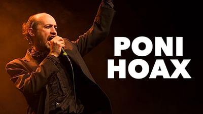 Poni Hoax bei der Route du Rock 2013