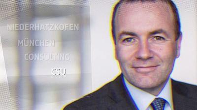 Manfred Weber: Kurze Biografie