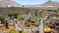 Außergewöhnliche Gärten weltweit und aktuelle Entwicklungen in der Landschaftsgestaltung