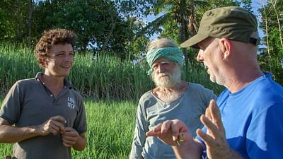 Philippines: Negros Island