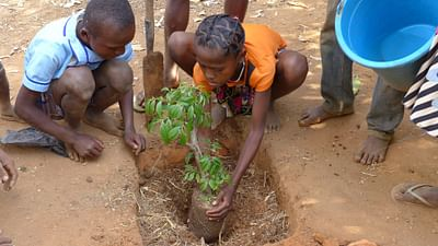 Madagascar: Fighting Poverty