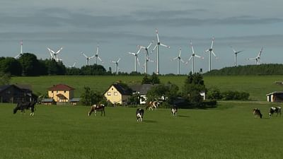 Wind Energy: Blessing or Curse?