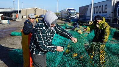 Scotland: Brexit Takes Toll on Fishing