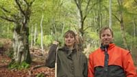 The forests of Europe are under threat but some are working hard to save them. Forest rangers, associations and local people combat climate change, illegal deforestation and the paper industry to preserve them for future generations.