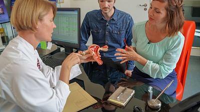 El útero: un órgano desconocido