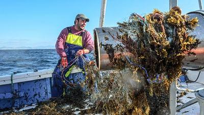 La pesca del atún en Andalucía