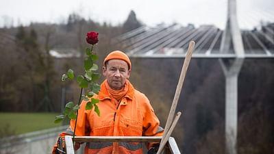 Una rosa y una escoba