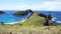 Nouvelle-zélande, l'aventure aux antipodes en streaming
