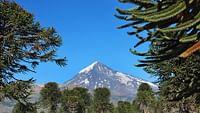 À la découverte de la patagonie en streaming