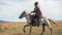 Equus - une histoire de chevaux et d?hommes en streaming