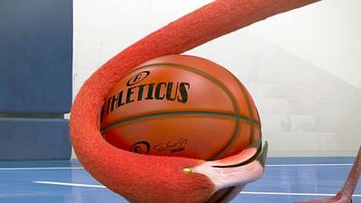 Athleticus