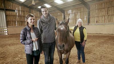 Xenius - L'équithérapie : quand le cheval se fait traducteur