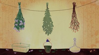 Chroniques végétales - L'ortie