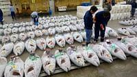 Tokyo, il était une fois le marché aux poissons en streaming