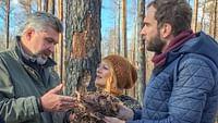 Xenius - les feux de forêt : comment les éviter ? en streaming