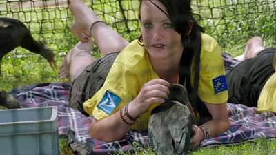 À 100% - Corinna Esterer, la mère des ibis chauves