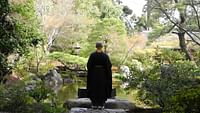 Geo reportage - japon, l'art du jardin zen en streaming