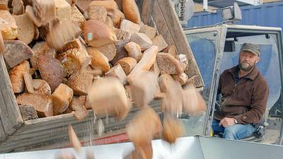 ARTE Regards - Le pain, cet aliment que l'on transforme
