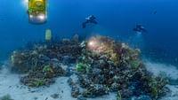 Planète méditerranée en streaming