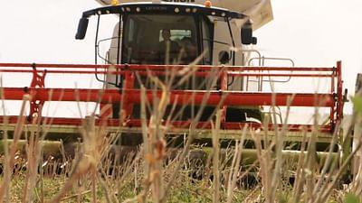 L'Autriche, premier pays à interdire le glyphosate
