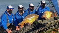 Arte regards - pêche au gros au lac balaton du 31/03
