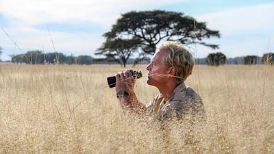Serengeti, les clés de notre avenir - Une enquête écologique