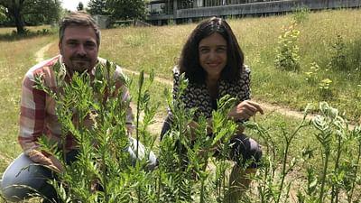 Xenius - Place à la nature : les leçons à tirer du confinement