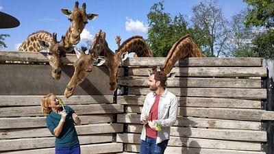 Xenius - Les zoos du futur