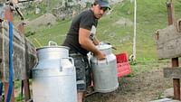Geo reportage - la fenaison en montagne, une tradition suisse du 21/03