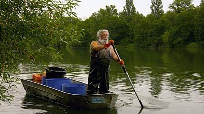 GEO Reportage - Le dernier pêcheur du Rhin