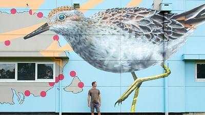 GEO Reportage - Australie, le street art s'invite sur les silos