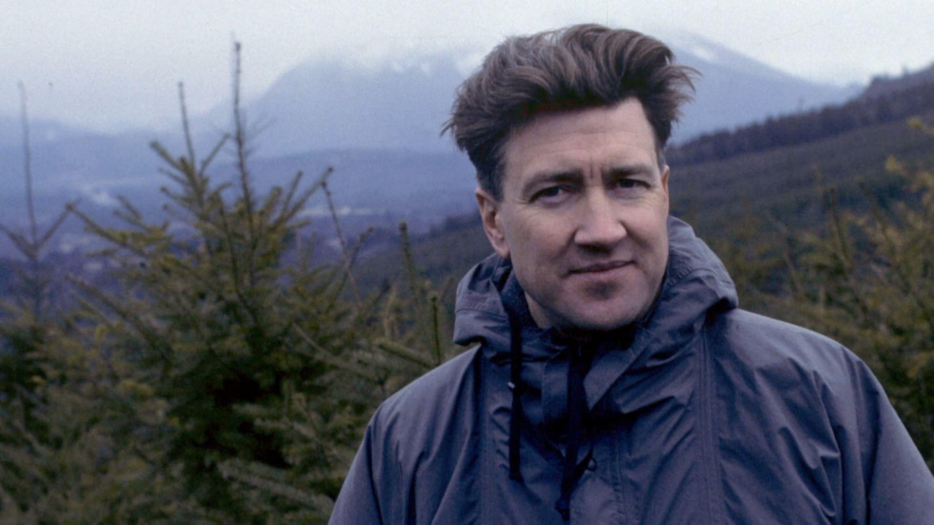 Twin Peaks, l'Amérique brumeuse de David Lynch