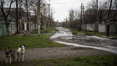 Ukraine : la vie sur le front de l'Est
