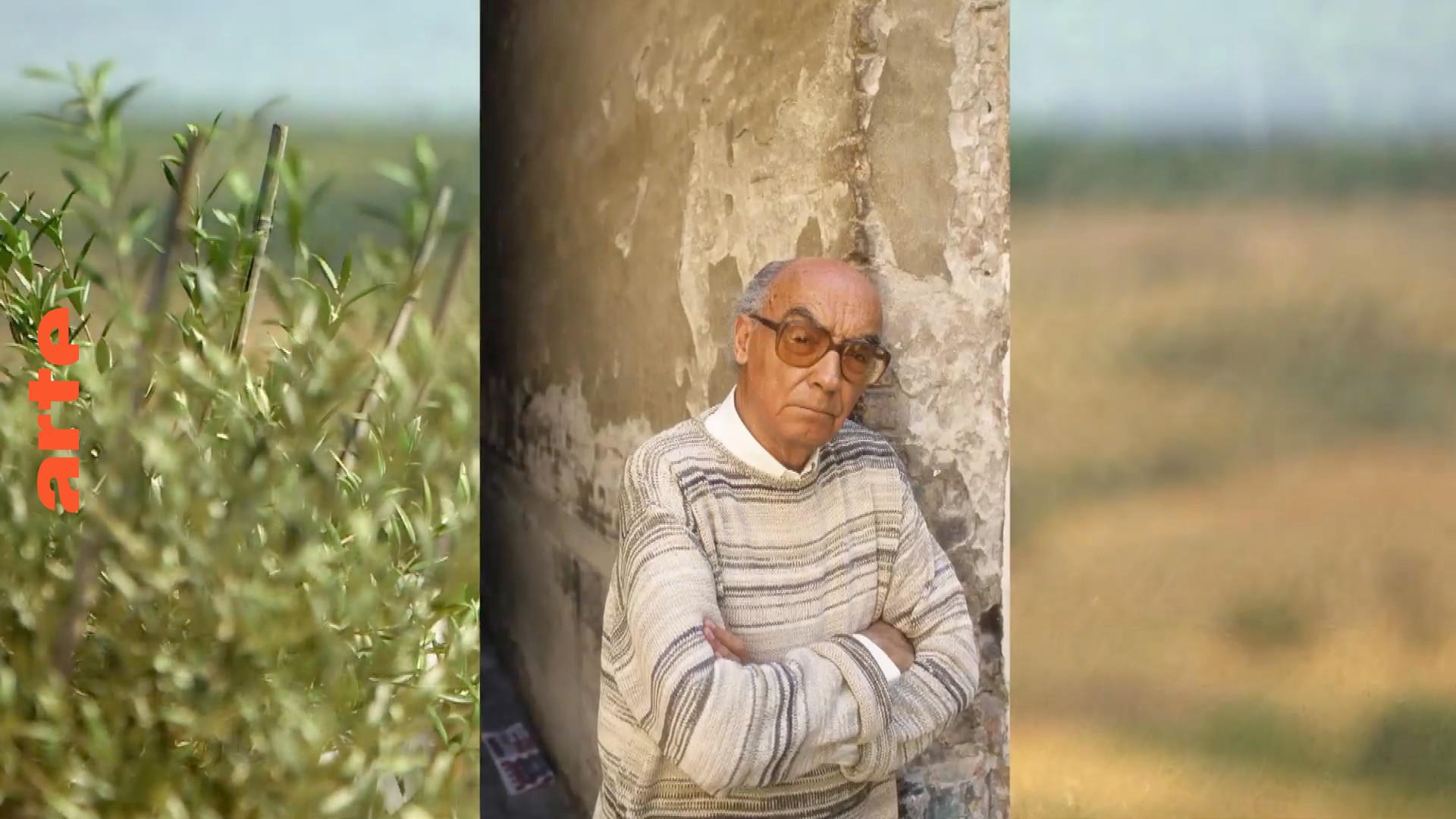 L'Alentejo vibrant de José Saramago - Invitation au voyage - Regarder le documentaire complet | ARTE