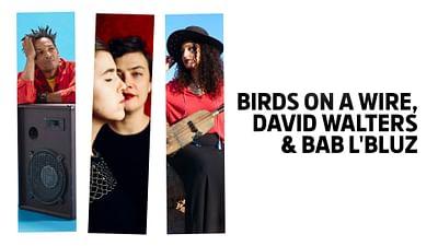 Birds on a Wire, David Walters et Bab L'Bluz en Concerts Volants