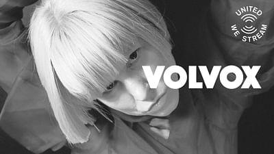 Volvox à New York City (Basement Club)